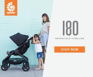 Ergo Reversible Stroller
