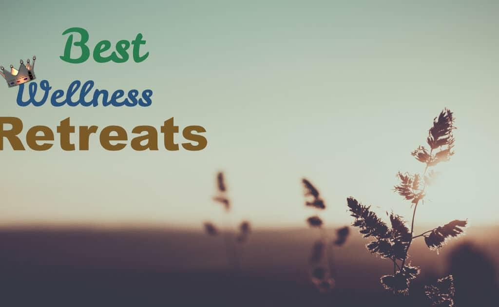 Best Retreats websites on LinkQueen.com