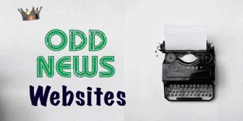 Odd News Website Page LinkQueen.com